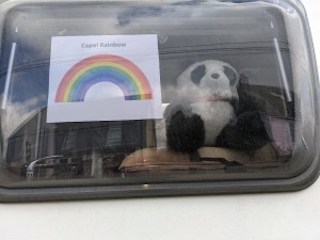 Rainbow and Bear picture